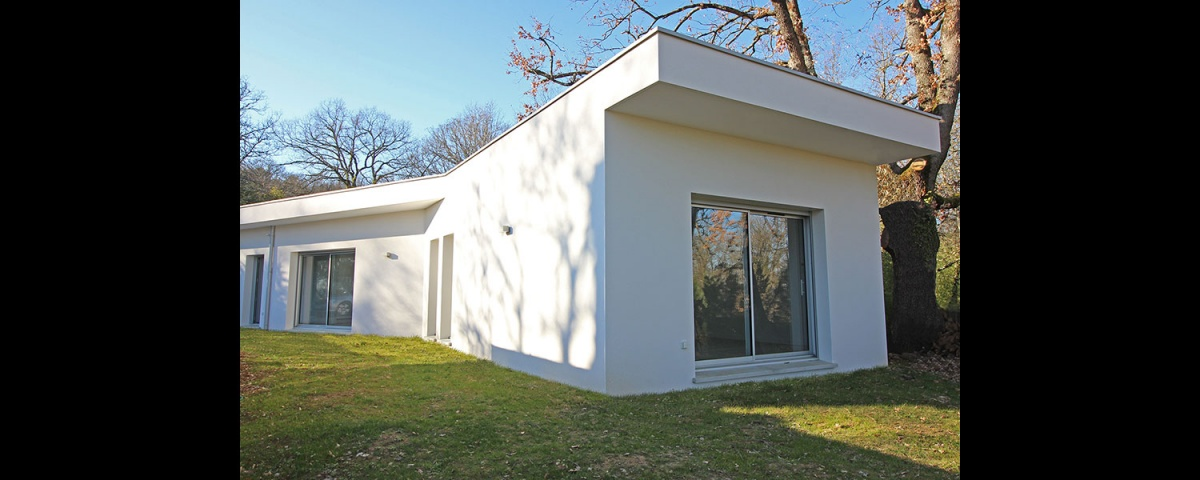 Maison dans la forêt : maison-contemporaine-traversante-dans-les-bois-7