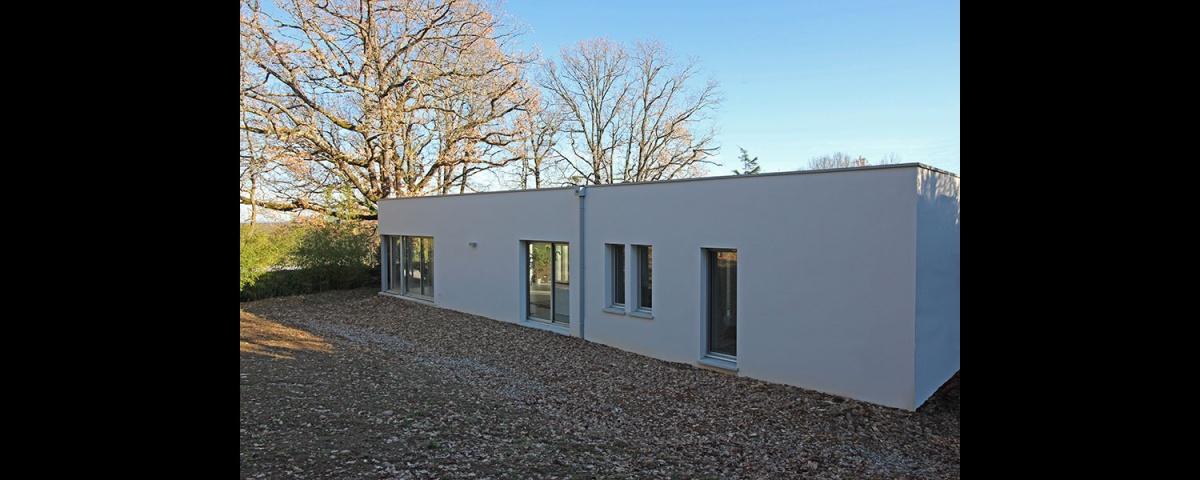 Maison dans la forêt : maison-contemporaine-traversante-dans-les-bois-8