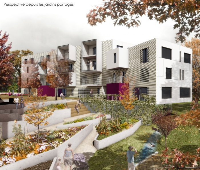 Construction de 39 logements collectifs et 6 semi-collectifs