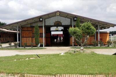 Ecuries, centre de dressage et d'élevage de chevaux