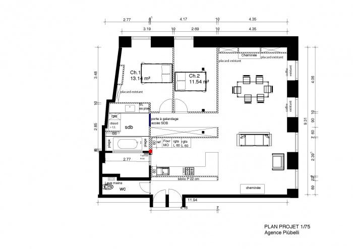 réhabilitation appartement 19 ème en  hypercentre : plan projet
