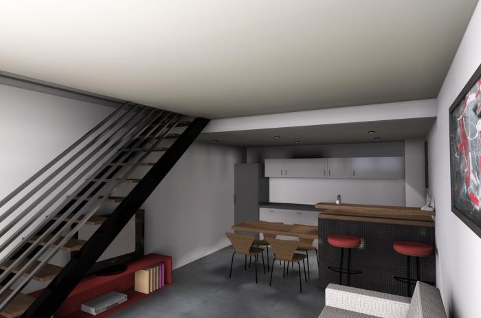Création de trois appartements dans un hangar : image_projet_mini_58251