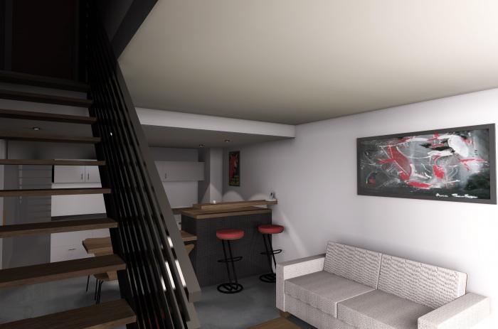 Création de trois appartements dans un hangar : Ambiance intérieure appartement 1