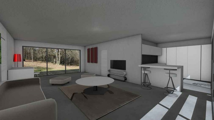 Maison contemporaine d'architecte pour petit budget : maison-contemporaine-economique-architecte-toit-terrasse-bois-4