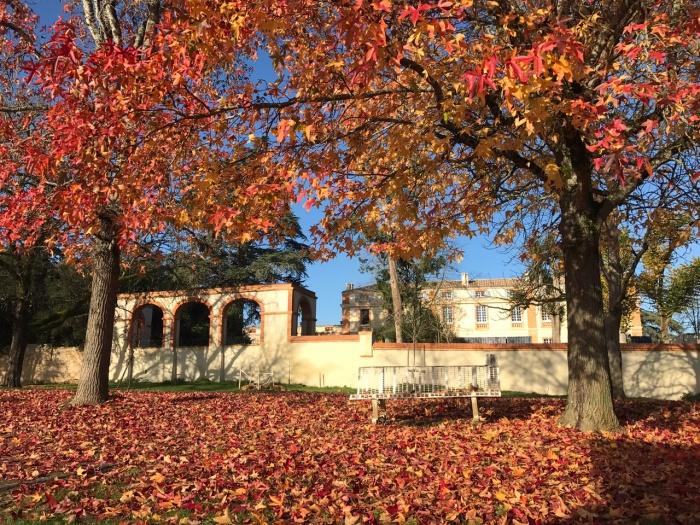 Réhabilitation du Chateau de Drudas : image_projet_mini_92614