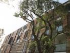 Construction de 27 logements sociaux avec commerces en rdc (label BBC) - ILOT NATURA